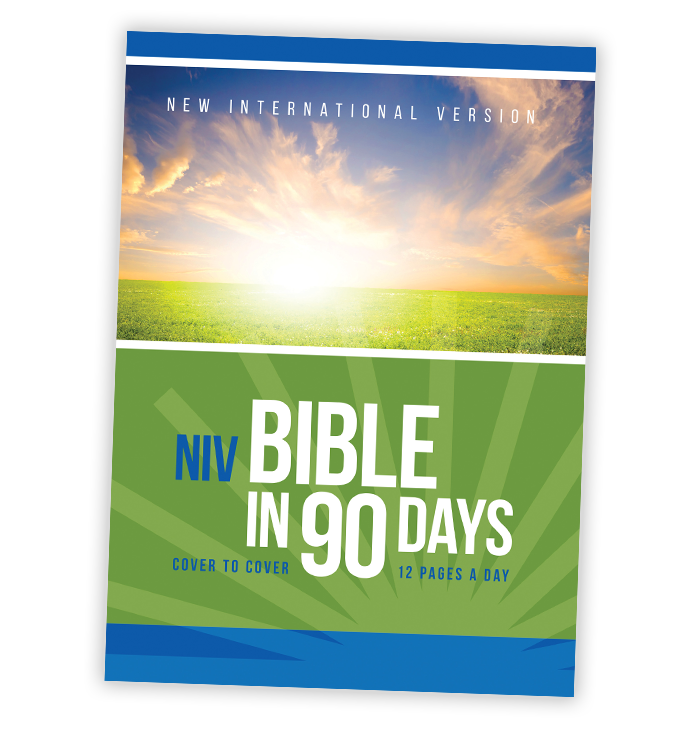 About Bible in 90 Days